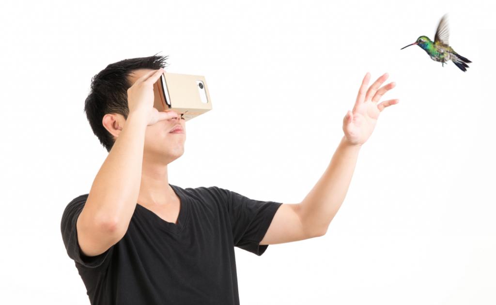 Person schaut 360-Grad Video mit Google Cardboard
